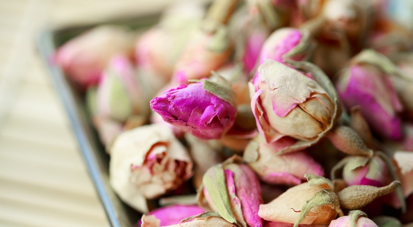 rosebud-2545642_1920